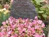Foto: Hubertus von Puttkamer - 2005